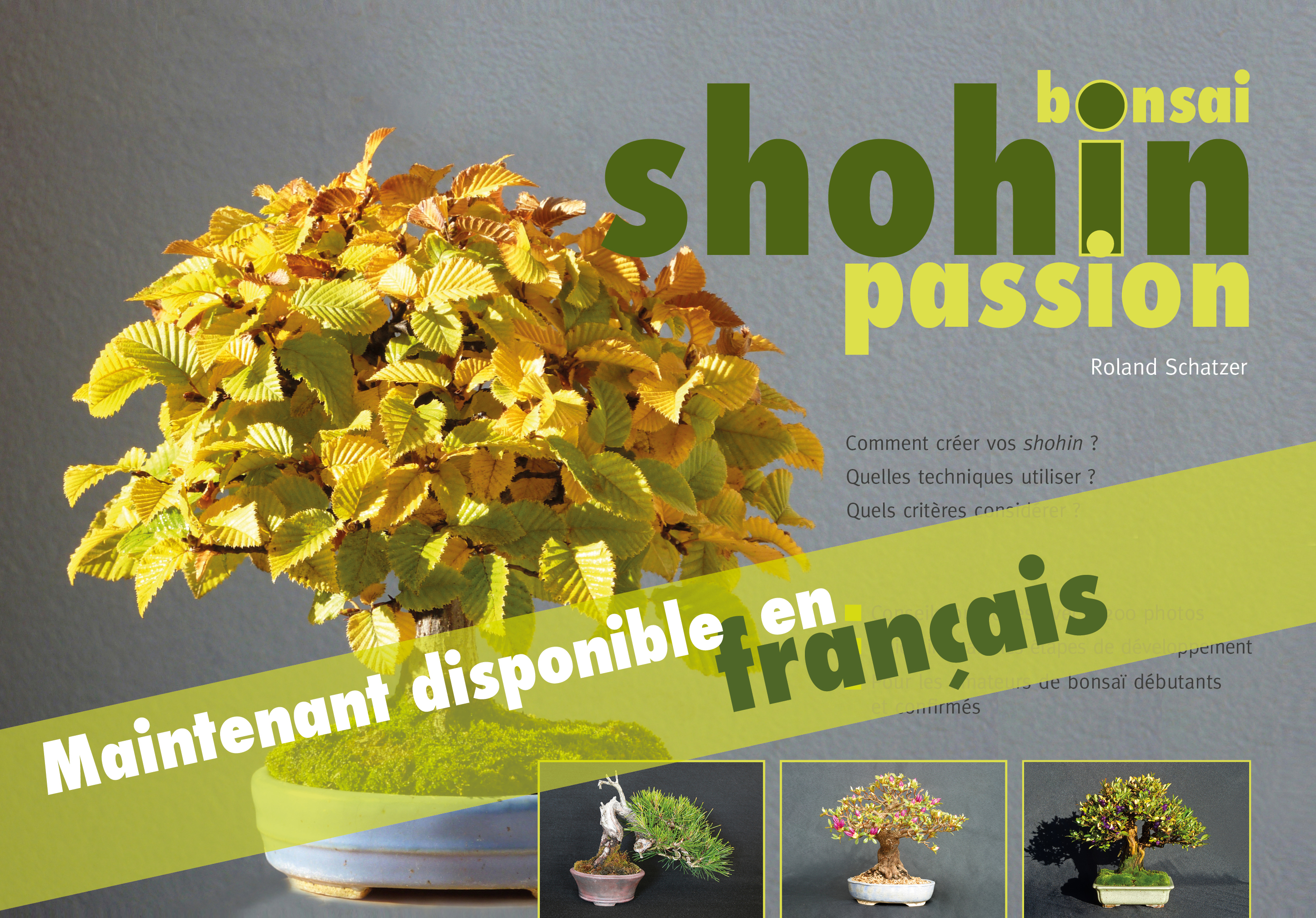 Bonsai Shohin France